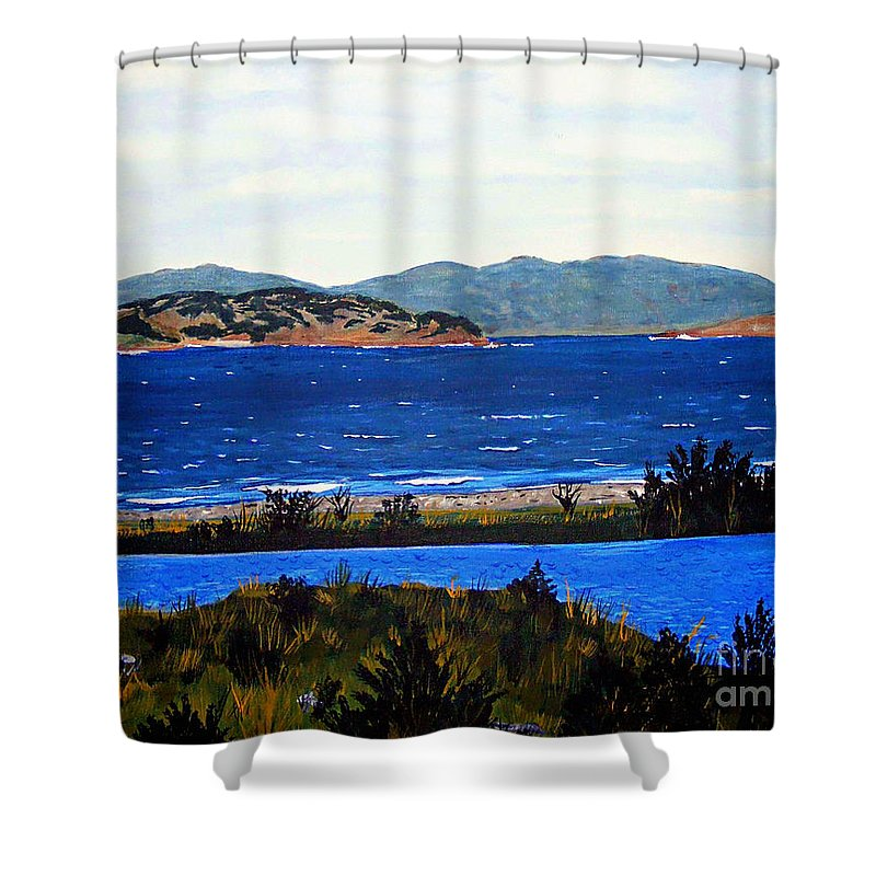 Islands Shower Curtain featuring the painting Iona formerly Rams Islands by Barbara Griffin