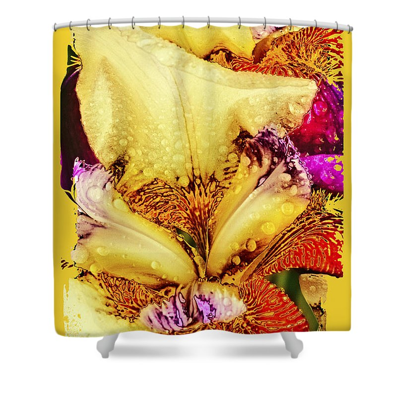 Iris Shower Curtain featuring the photograph Iris - Customized by Paul W Faust - Impressions of Light