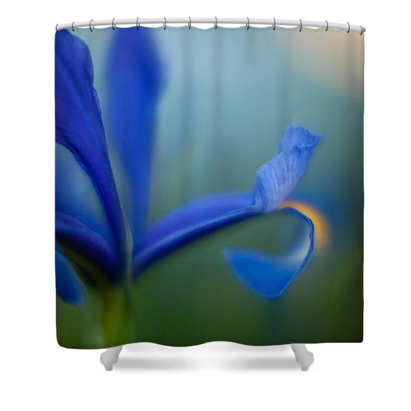 Iris Shower Curtain featuring the photograph Iris Edge by Mike Reid