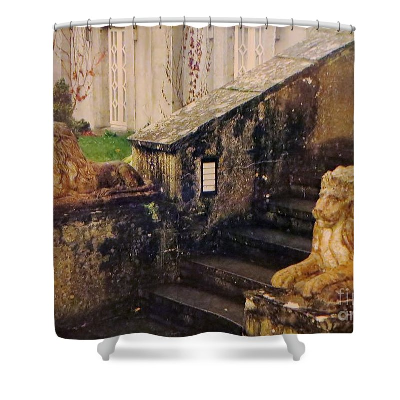 Stairs Shower Curtain featuring the photograph Irish Steps by Tim Townsend