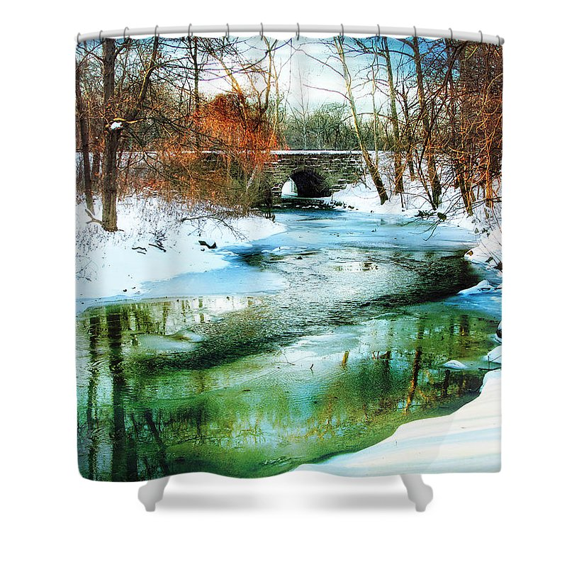 Winter Shower Curtain featuring the photograph January Thaw by Jessica Jenney