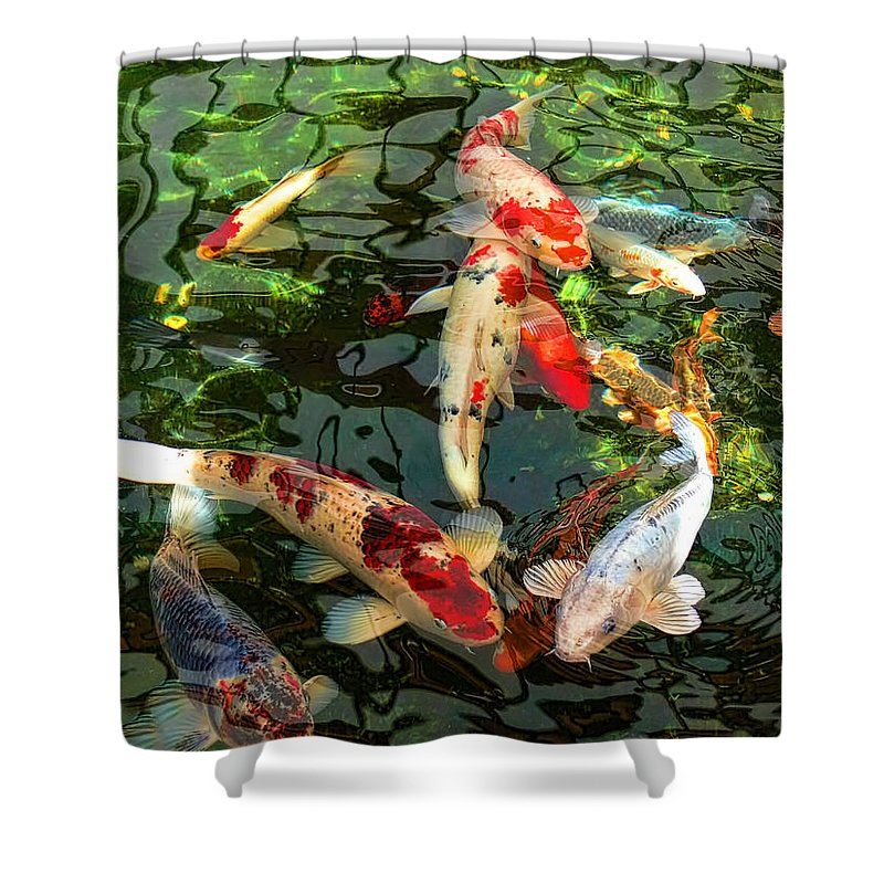 Koi Shower Curtain Featuring The Photograph Japanese Fish Pond By Jennie Marie Schell