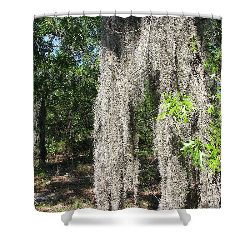 Patzer Shower Curtain featuring the photograph Just The Backyard by Greg Patzer