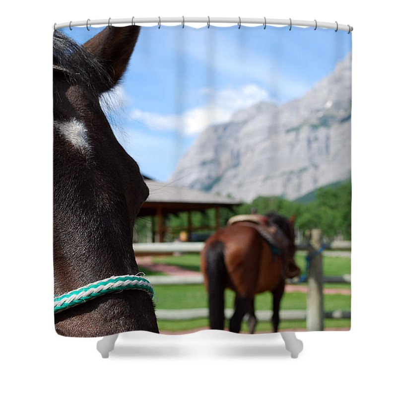 Kananaskis Shower Curtain featuring the photograph K Country by Lisa Knechtel