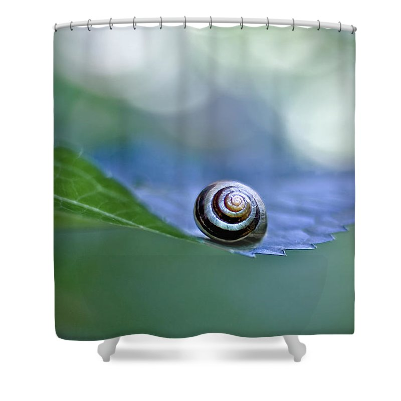 Shower Curtain featuring the photograph Keeping The Balance by Maria Ismanah Schulze-Vorberg