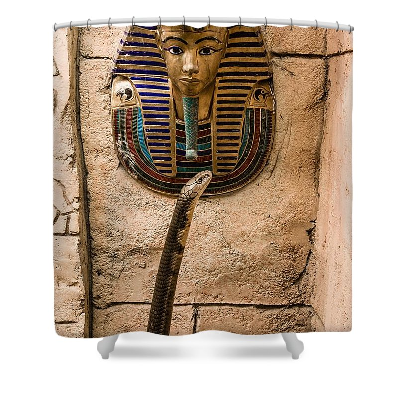 King Cobra Shower Curtain featuring the photograph King And King by Robert L Jackson
