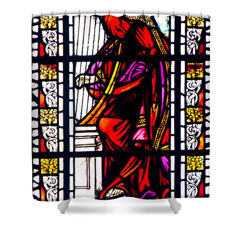 King David Shower Curtain featuring the photograph King David by Roger Wedegis