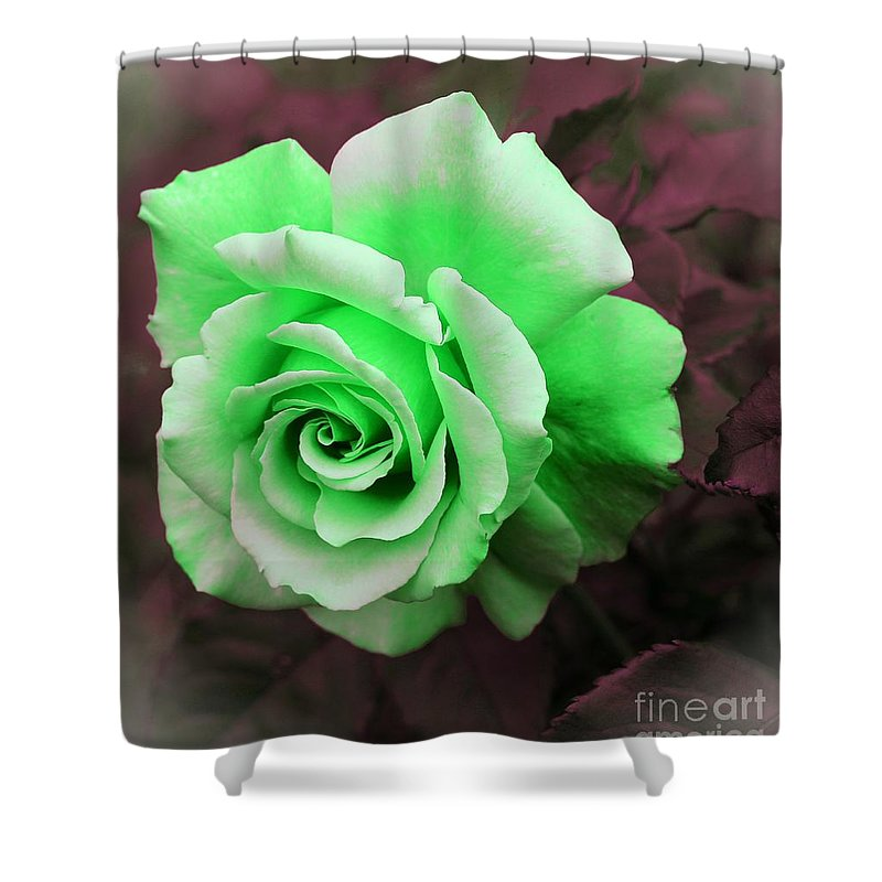 Kiwi Lime Rose Shower Curtain featuring the photograph Kiwi Lime Rose by Barbara Griffin