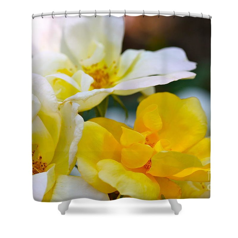 Cathy Dee Janes Shower Curtain featuring the photograph Knockout by Cathy Dee Janes
