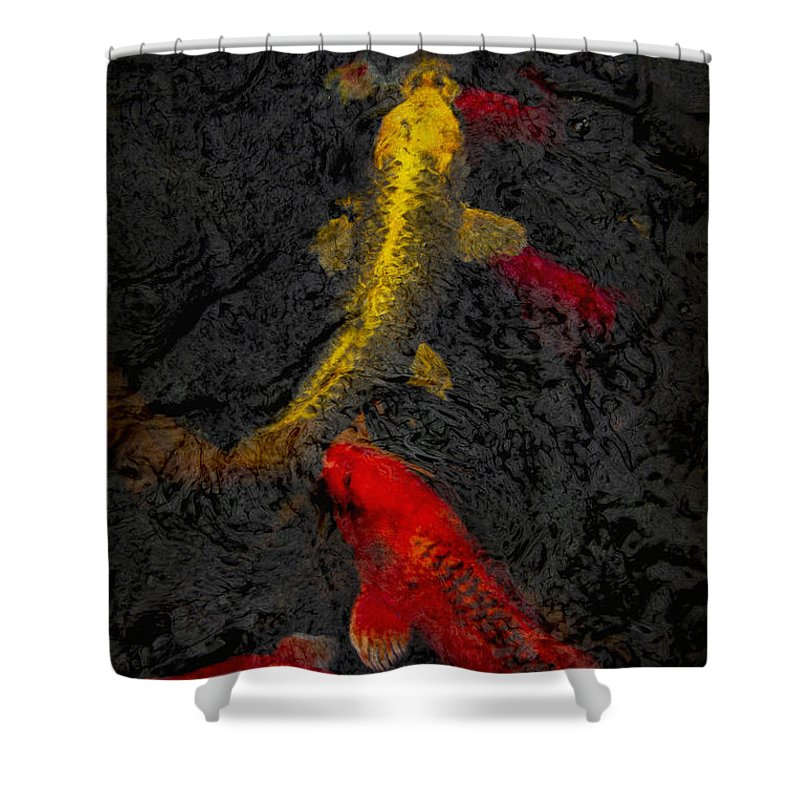 Fish Shower Curtain featuring the photograph Koi by Margie Hurwich