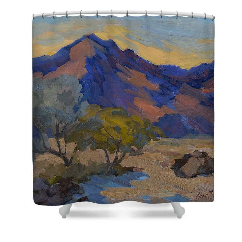 La Quinta Shower Curtain featuring the painting La Quinta Shadows by Diane McClary