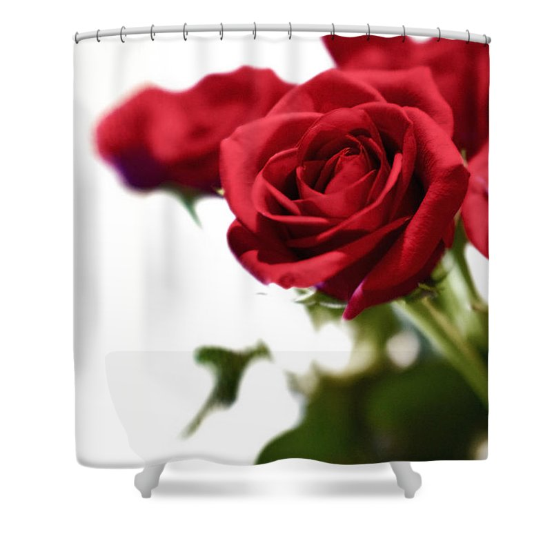 Rose Shower Curtain featuring the photograph Lady In Red by Scott Pellegrin