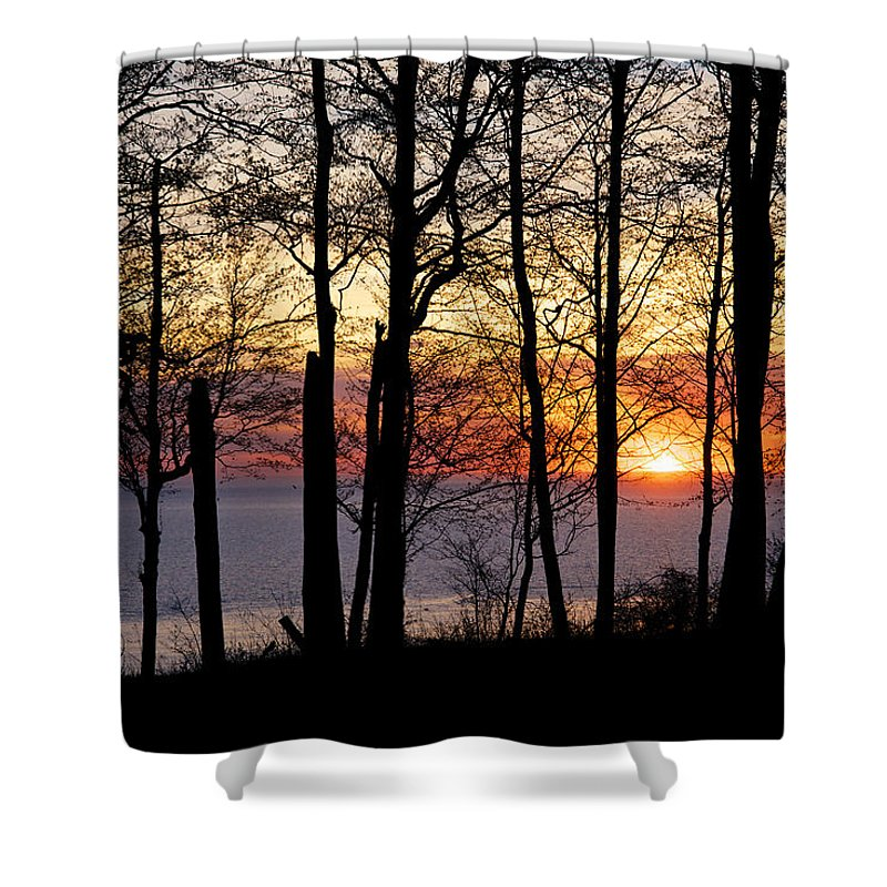 Lake Shower Curtain featuring the photograph Lake Michigan Sunset With Silhouetted Trees by Mary Lee Dereske