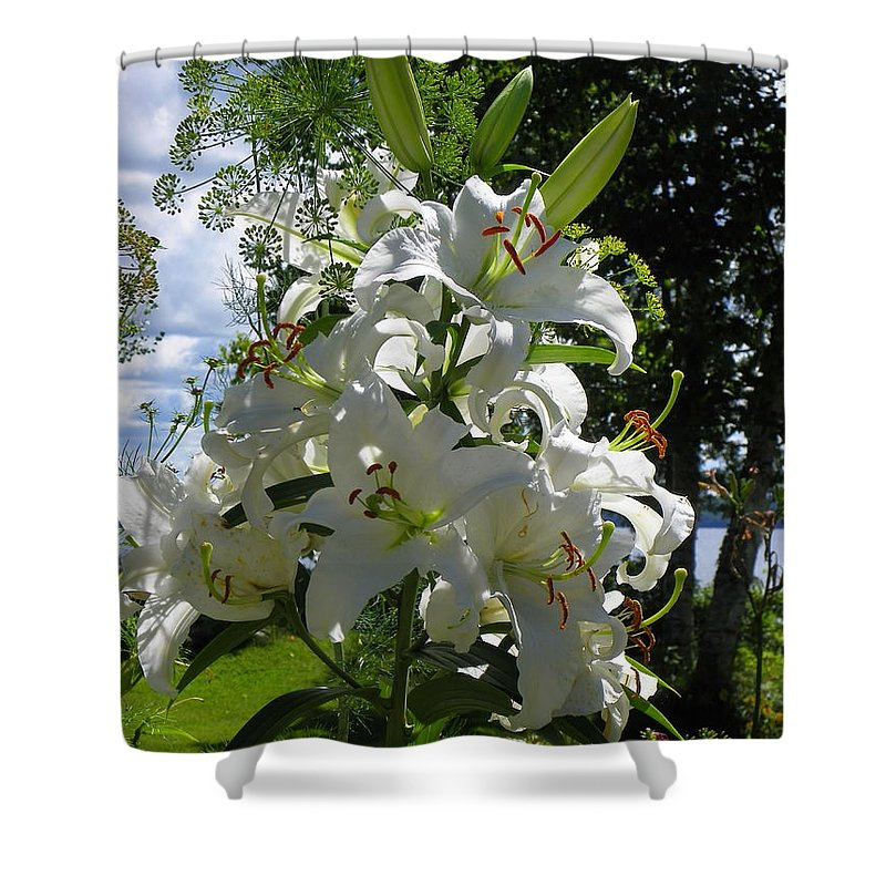 White Shower Curtain featuring the photograph Lakeside Lilies by Georgia Hamlin