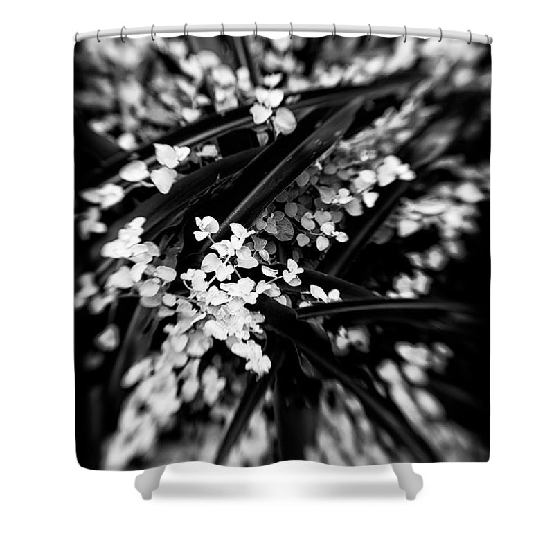Botanical Shower Curtain featuring the photograph Lances In The Leaves by Venetta Archer