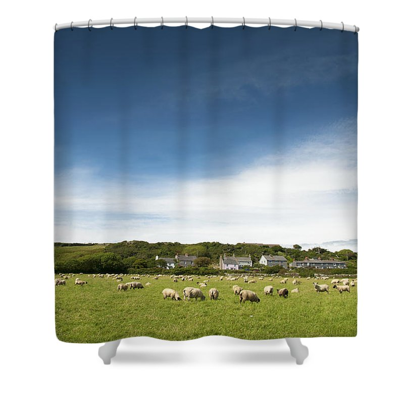 Uk Shower Curtain featuring the photograph Landscape Near East Prawle In England by Chevy Fleet