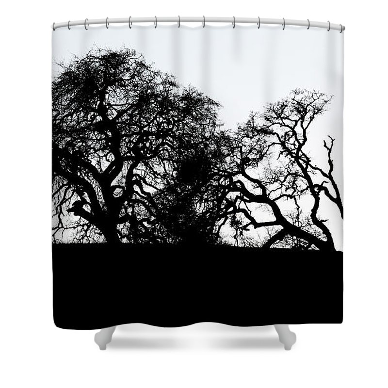 Horse Shower Curtain featuring the photograph Final Journey by Bob Christopher