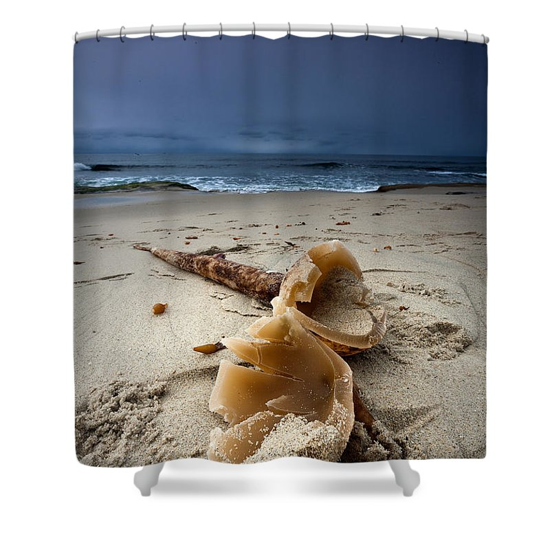 Beach Shower Curtain featuring the photograph Laughing With A Mouth Full Of Sand by Peter Tellone