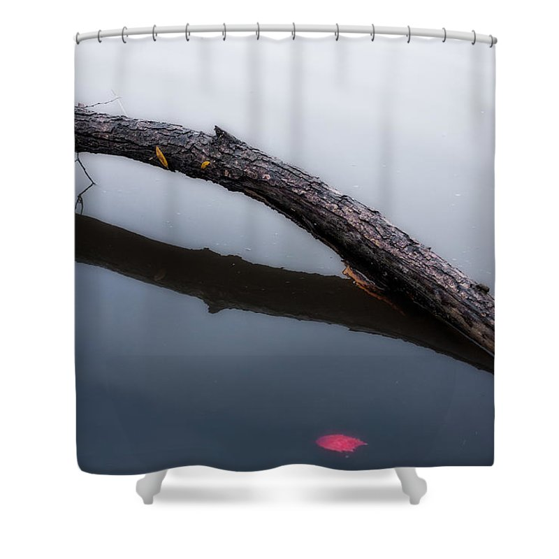 Red Leaf Lake River Pond Pool Water Tree Limb Branch Log Wood Wet Autumn Fall Season Change Arc Arch Line Lines Ripple Wave Zen Calm Serene Serenity Quiet Peace Peaceful Heal Healing Stream Cool Blue Gray White Shower Curtain featuring the photograph Stick by Tom Gort