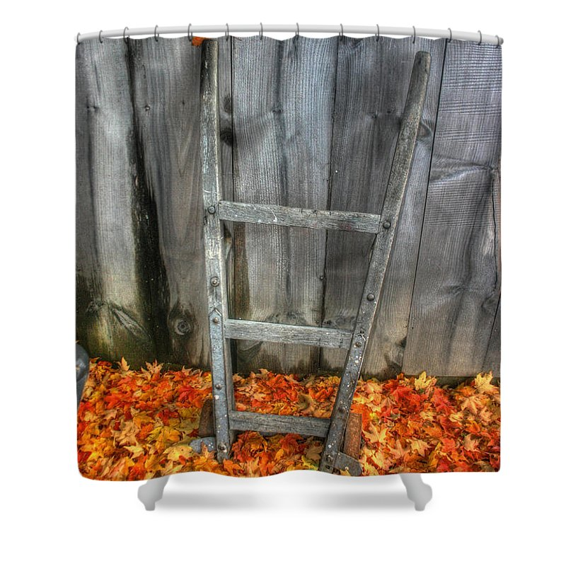 Dolly Shower Curtain featuring the photograph Leaf On A Dolly by Wayne King