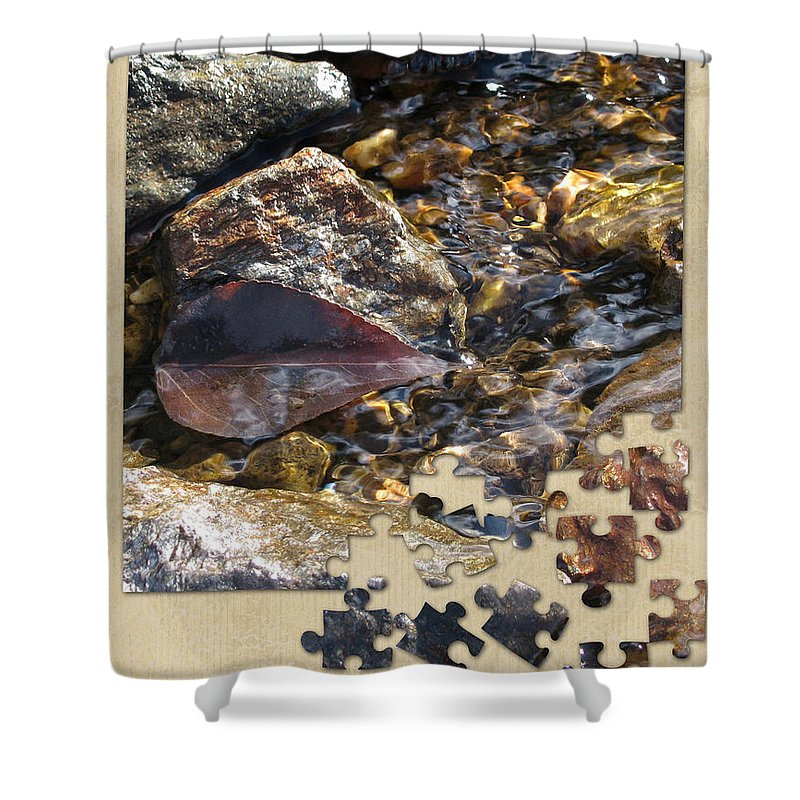 Leaf Shower Curtain featuring the photograph Leaf Puzzle-2 by Leone Lund