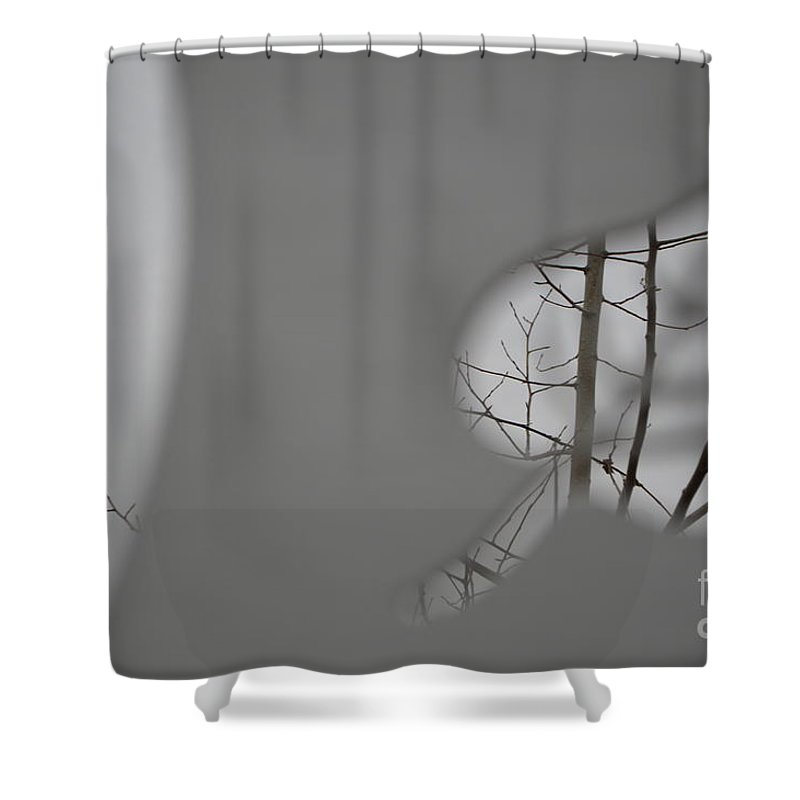 Leafless Shower Curtain featuring the photograph Leafless by Brian Boyle