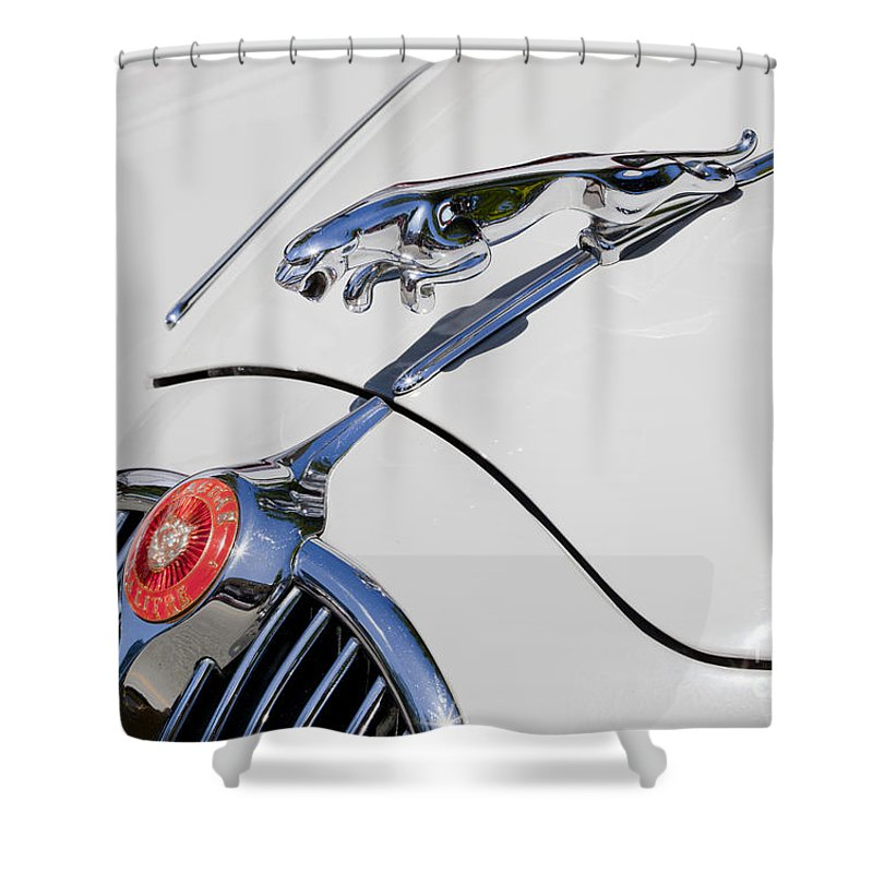 Jaguar Shower Curtain featuring the photograph Leaping Jaguar by Chris Dutton