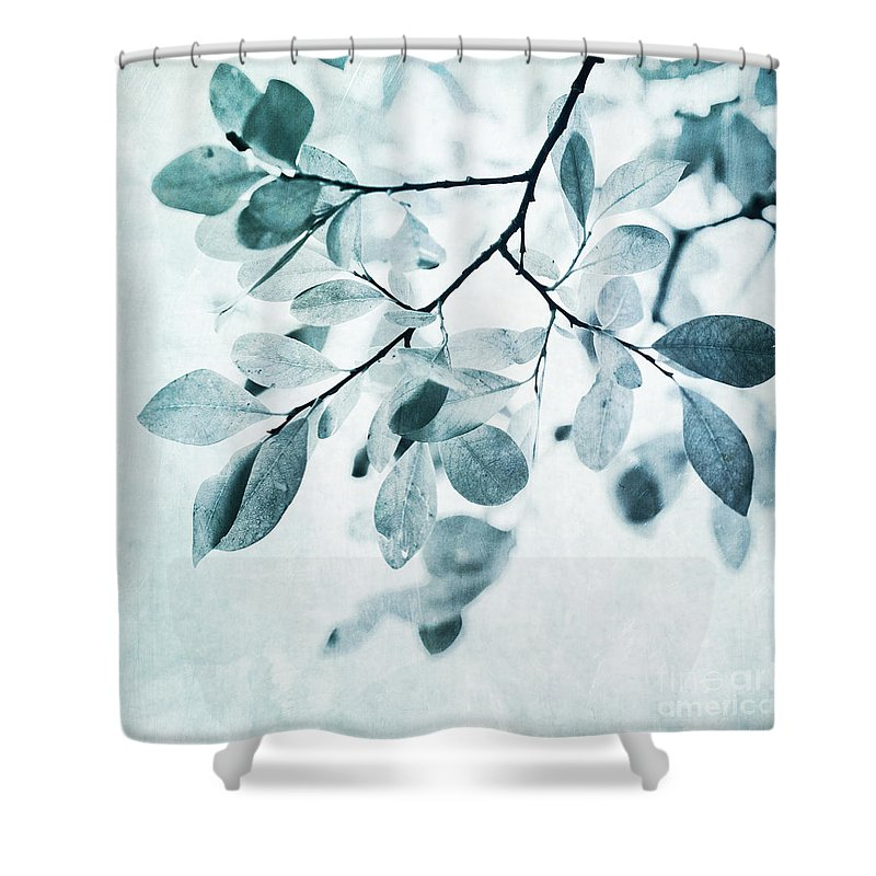 Foliage Shower Curtain featuring the photograph Leaves In Dusty Blue by Priska Wettstein