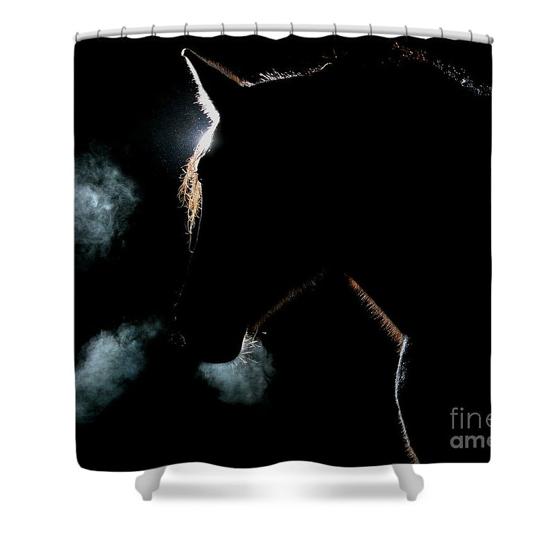 Horse Shower Curtain featuring the photograph Legend by Jeff Lesnik
