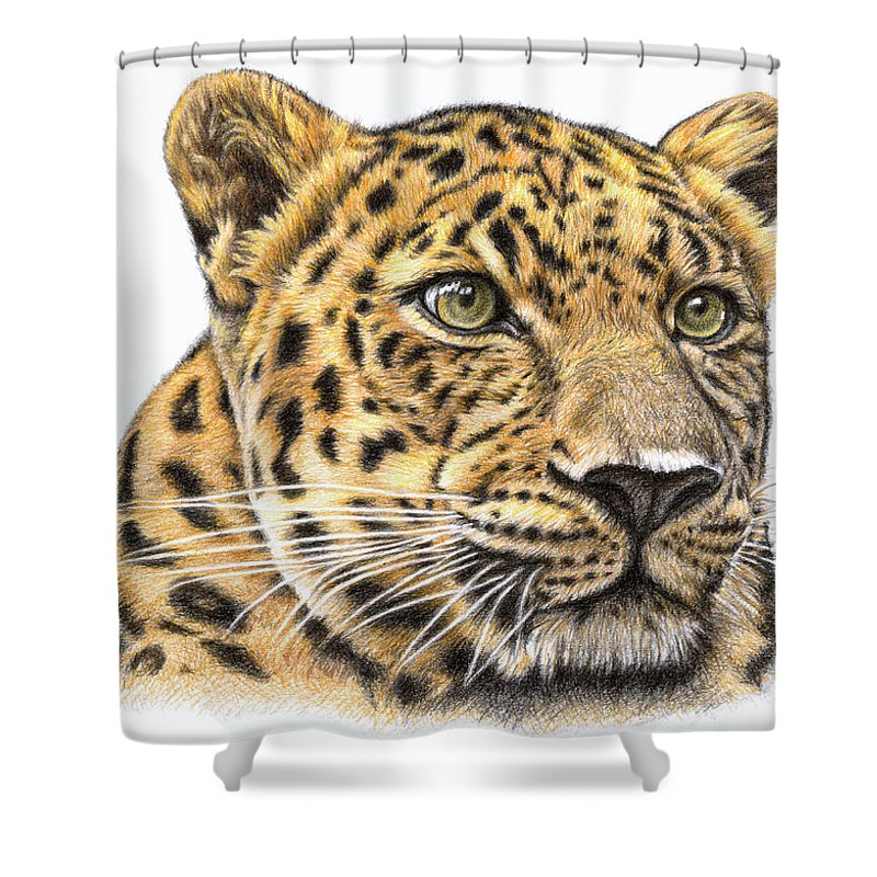 Leopard Shower Curtain featuring the drawing Leopard by Nicole Zeug