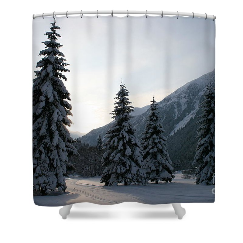 Snow Shower Curtain featuring the photograph Like Powdered Sugar by Christiane Schulze Art And Photography