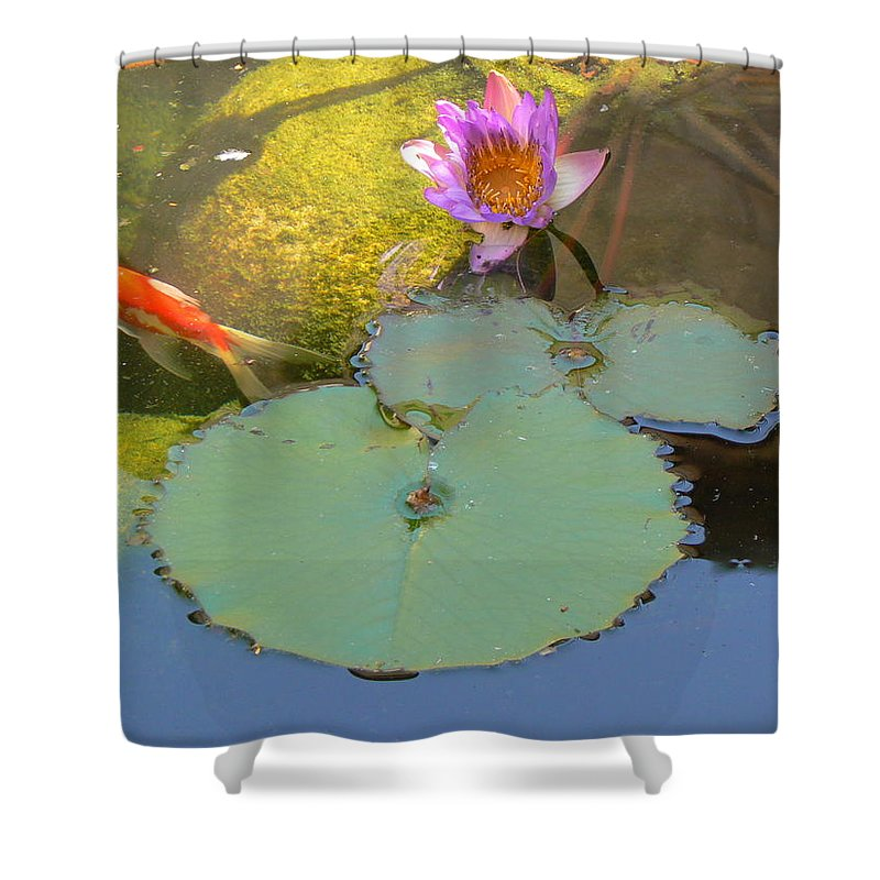 Israel Shower Curtain featuring the photograph Lily And The Gold Fish by Katerina Naumenko