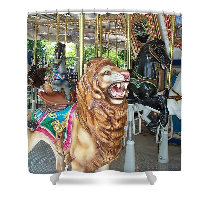 Lion Shower Curtain featuring the photograph Lion At Liberty by Barbara McDevitt