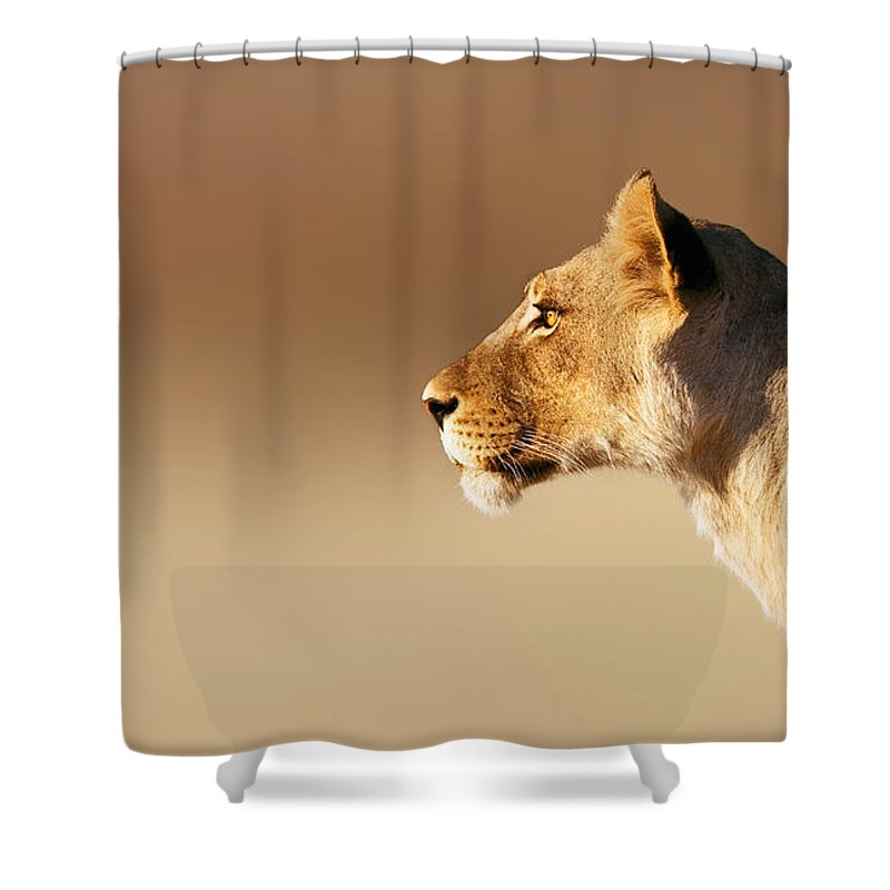 Lion Shower Curtain featuring the photograph Lioness Portrait by Johan Swanepoel