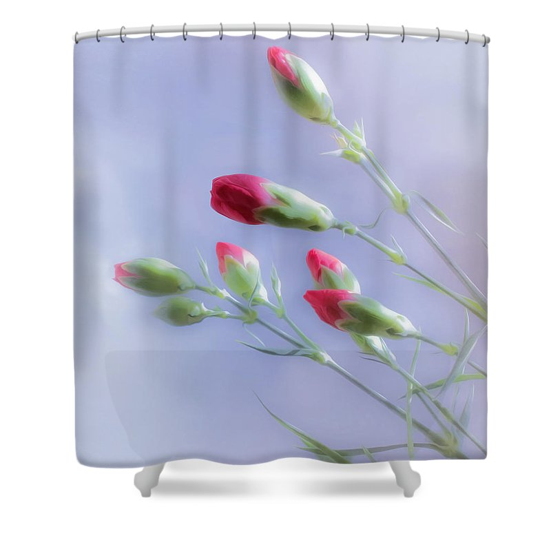 Red Shower Curtain featuring the photograph Little Red Carnations In The Sun by Hal Halli
