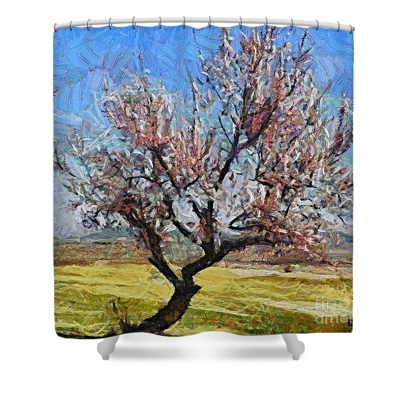 Almond Shower Curtain featuring the painting Lone Almond Tree In Bloom by Dragica Micki Fortuna