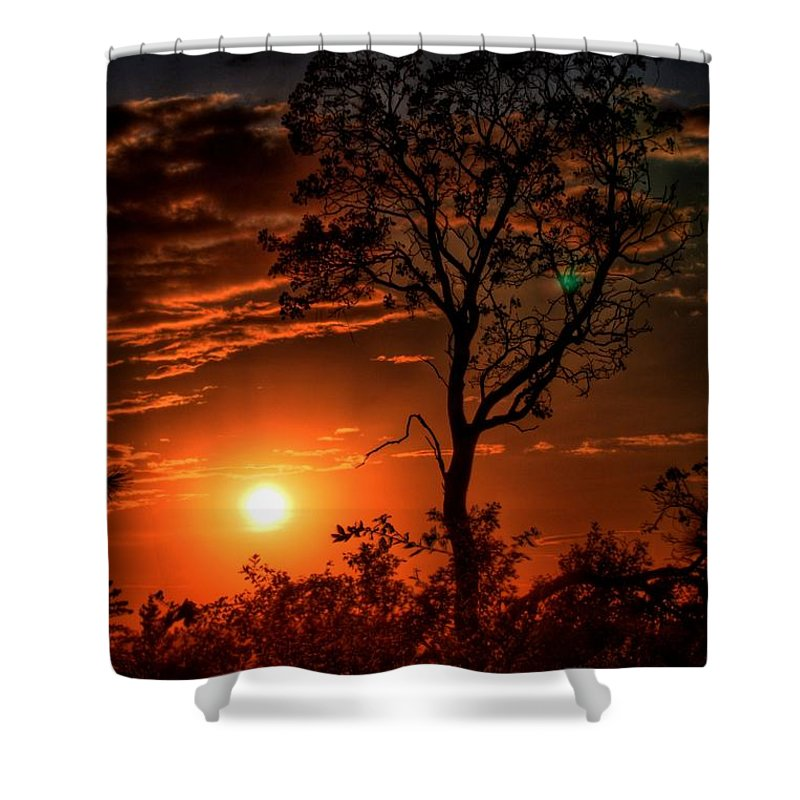 Lone Manzanita Sunset Shower Curtain featuring the photograph Lone Manzanita Sunset by Patrick Witz