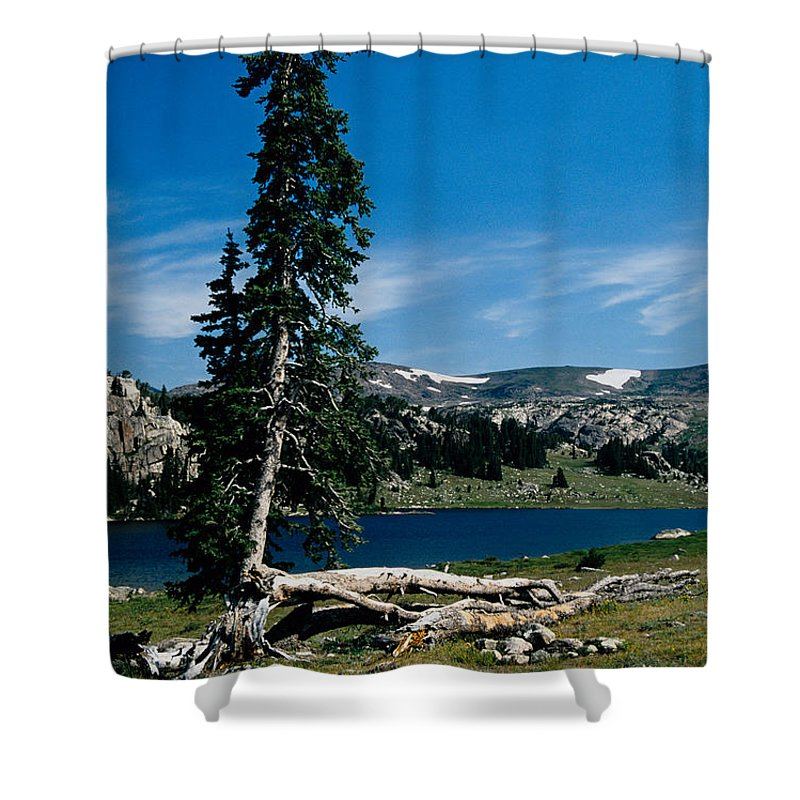 Mountains Shower Curtain featuring the photograph Lone Tree At Pass by Kathy McClure