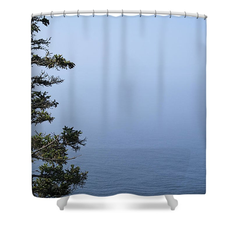 Art Shower Curtain featuring the photograph Lone Tree By The Water In Acadia National Park by Randall Nyhof