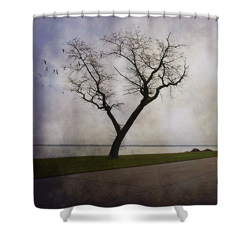 Tree Shower Curtain featuring the photograph Lone Tree In Winter by Amy Jackson