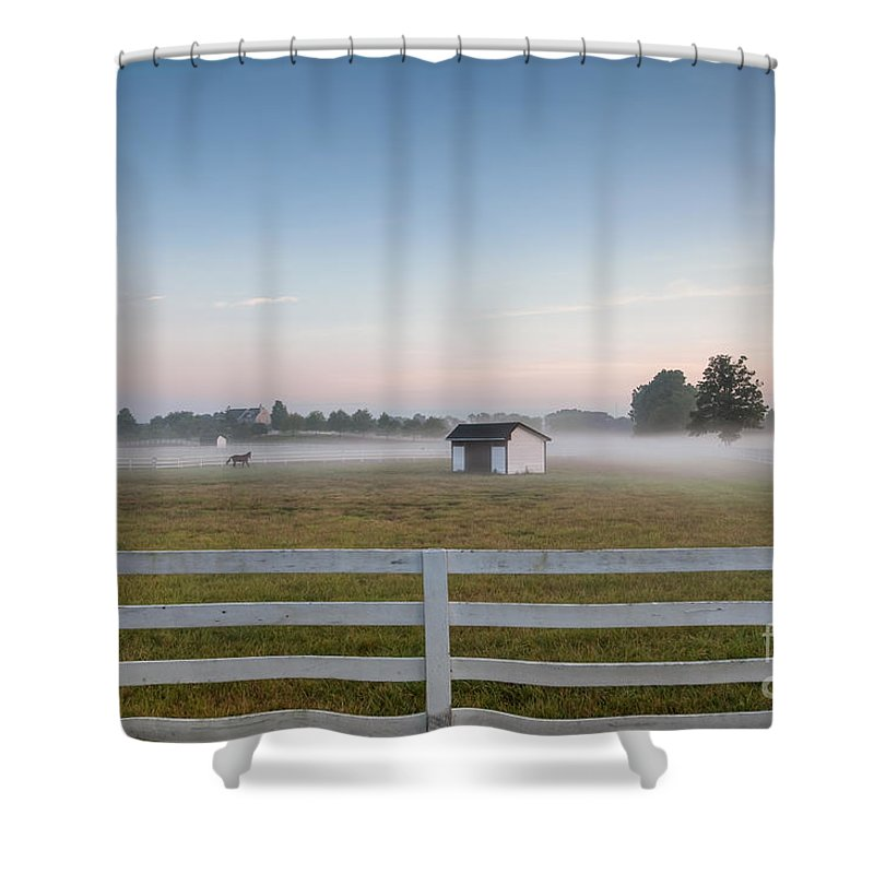 Mikeversprill.com Shower Curtain featuring the photograph Lonely Horse by Michael Ver Sprill