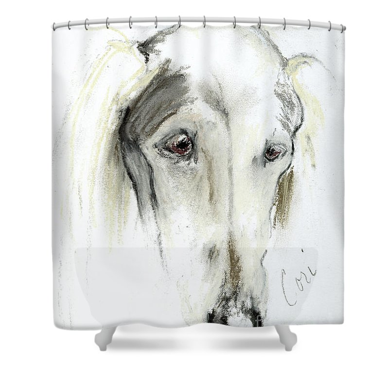 Saluki Shower Curtain featuring the drawing Loni by Cori Solomon