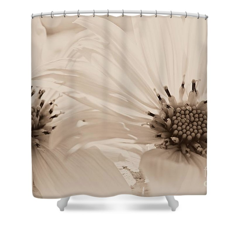 Flowers Shower Curtain featuring the photograph Look At Me by Clare Bevan