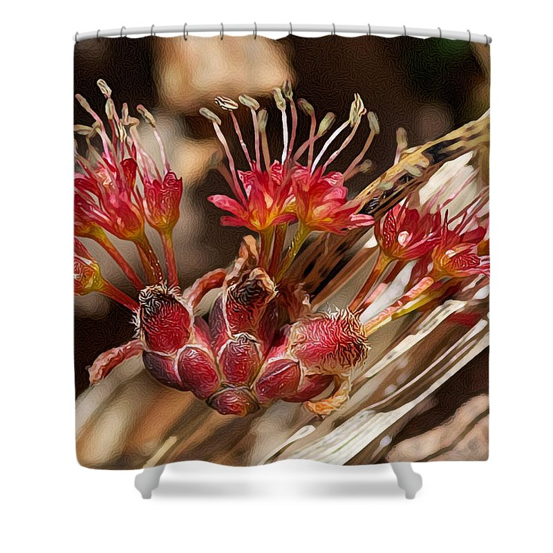 Flower Shower Curtain featuring the photograph Lost Blossom by WB Johnston