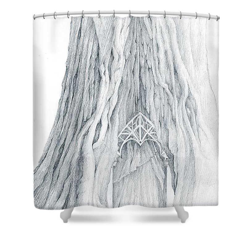 Lothlorien Shower Curtain featuring the drawing Lothlorien Mallorn Tree by Curtiss Shaffer