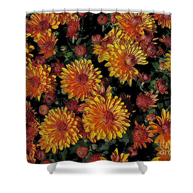 Mum Shower Curtain featuring the photograph Lots Of Sunshine by Ann Horn