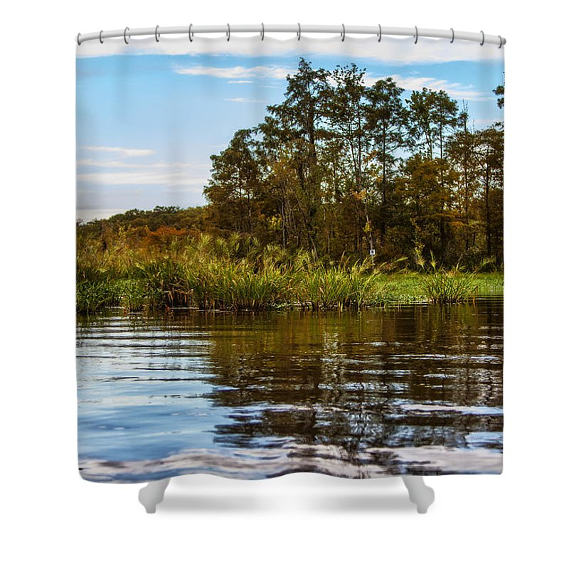 Swamp Shower Curtain featuring the photograph Louisiana Lake by Diana Powell