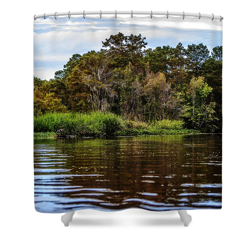 Swamp Shower Curtain featuring the photograph Louisiana Lake II by Diana Powell