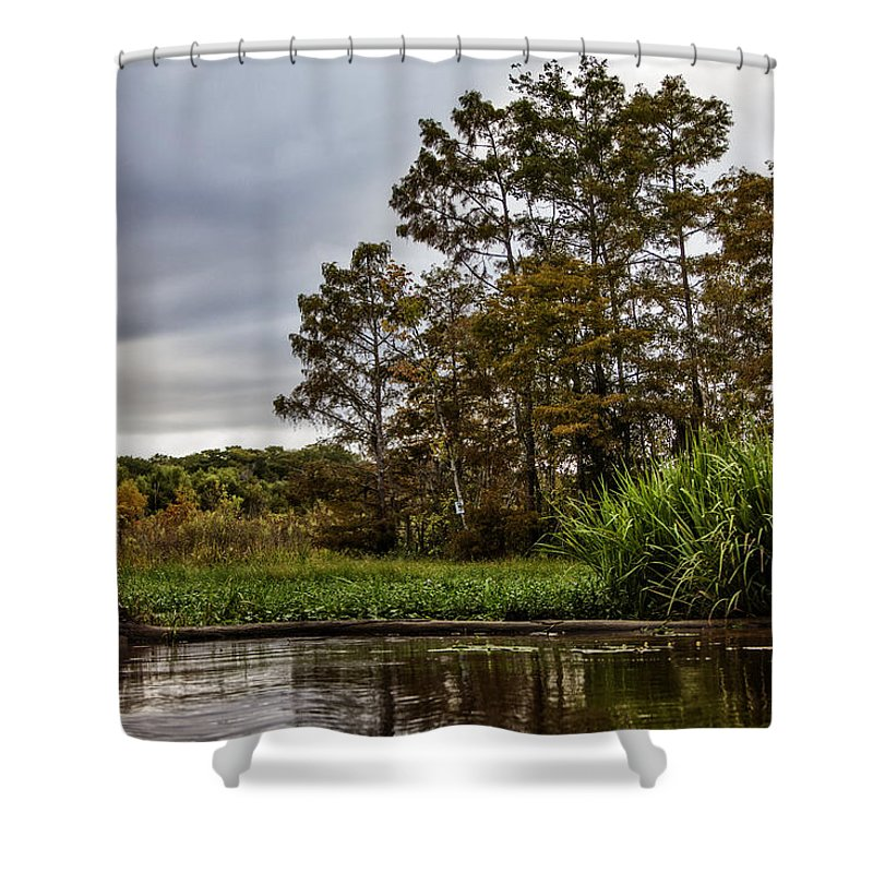 Swamp Shower Curtain featuring the photograph Louisiana Landscape by Diana Powell