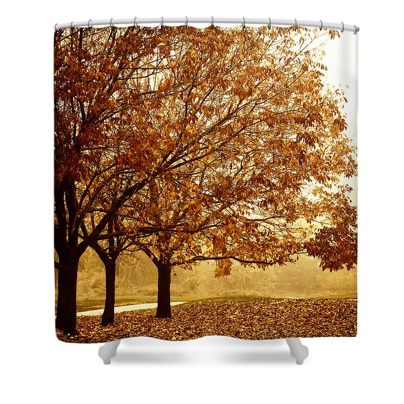 Louisville Shower Curtain featuring the photograph Louisville Fall 2 by Marilyn Hunt
